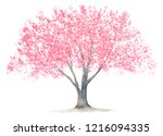 A Cherry  Tree Watercolor...
