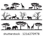 Stock photo animals forest silhouette at savanah 1216270978