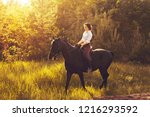 rider on a horse in the woods... | Shutterstock . vector #1216293592
