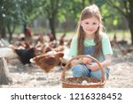 young girl holding chicken eggs ... | Shutterstock . vector #1216328452