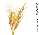 yellow ripe spikelets and... | Shutterstock .eps vector #1216340038