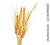 yellow ripe spikelets and... | Shutterstock .eps vector #1216340065