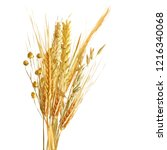 yellow ripe spikelets and... | Shutterstock .eps vector #1216340068