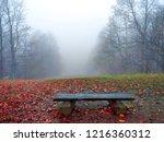 red autumn fog forest mist...   Shutterstock . vector #1216360312