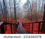 red autumn mist forest stairway ... | Shutterstock . vector #1216360378