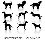 Stock vector dog silhouettes vector no open shapes or paths 121636705