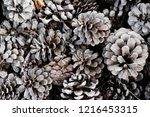 closeup of a pile of dry pine... | Shutterstock . vector #1216453315