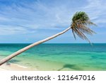 coconut tree on the beach | Shutterstock . vector #121647016
