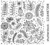 botanical doodle line... | Shutterstock .eps vector #1216487308