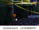 pittsburgh  pennsylvania   usa  ... | Shutterstock . vector #1216488055
