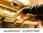 male hands playing organ... | Shutterstock . vector #1216517665