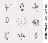 a set of nine hand drawn floral ... | Shutterstock .eps vector #1216695508
