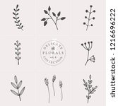 a set of nine hand drawn floral ... | Shutterstock .eps vector #1216696222