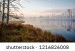 autumn landscape. morning fog ...   Shutterstock . vector #1216826008