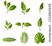 leaf nature design set vector | Shutterstock .eps vector #1216863658