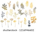 willow and palm tree branches ... | Shutterstock .eps vector #1216946602