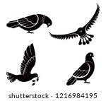Pigeon Or Dove  White Bird...