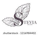 stevia natural sweetener  leaf... | Shutterstock .eps vector #1216984402