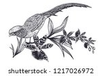 decoration with bird and... | Shutterstock .eps vector #1217026972