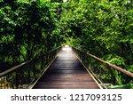 Hanging Bridge At Botanical...