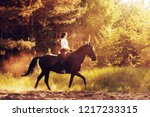 rider on a horse in the woods... | Shutterstock . vector #1217233315