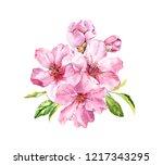 pink spring flowers. cherry...   Shutterstock . vector #1217343295