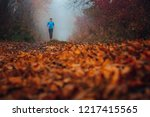pathway in autumn forest.... | Shutterstock . vector #1217415565