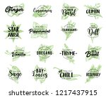 spices and herbs or organic... | Shutterstock .eps vector #1217437915