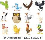 group of cartoon birds. vector...