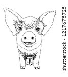 piglet vector illustration....   Shutterstock .eps vector #1217675725