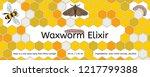bee  wax moth  waxworm  bee comb | Shutterstock .eps vector #1217799388