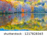 the pond of a specular surface  | Shutterstock . vector #1217828365