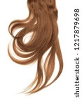 brown hair  isolated on white...   Shutterstock . vector #1217879698