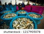 samutsakorn thailand  ... | Shutterstock . vector #1217905078