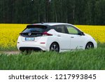 riga  may 2018   nissasn leaf   ... | Shutterstock . vector #1217993845