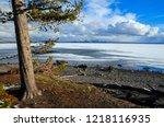 yellowstone lake in springtime   Shutterstock . vector #1218116935