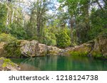 Ladies Well in the Chichester State Forest - Taken on the Allyn River, Barrington Tops National Park, NSW, Australia