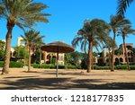 Beautiful palms on the beach. Tropical resort in Tala Bay, Hashemite Kingdom of Jordan