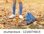 Woman cleaning up fallen leaves ...