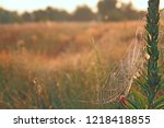 big cobweb among blades in... | Shutterstock . vector #1218418855
