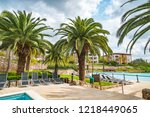 tropical palm trees on the... | Shutterstock . vector #1218449065