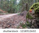 grp footpath sign   Shutterstock . vector #1218512632
