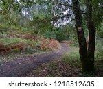 grp footpath sign   Shutterstock . vector #1218512635
