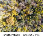 fall wood from above. landscape.... | Shutterstock . vector #1218552448