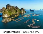 floating fishing village and... | Shutterstock . vector #1218766492