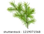 christmas composition made of... | Shutterstock . vector #1219071568