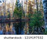 autumn forest river reflection...   Shutterstock . vector #1219197532