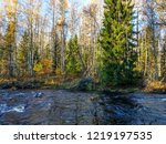 autumn forest river view. wild...   Shutterstock . vector #1219197535