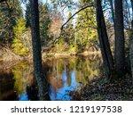 autumn forest river water...   Shutterstock . vector #1219197538