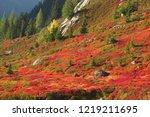 mont blanc chamonix autumn  ... | Shutterstock . vector #1219211695